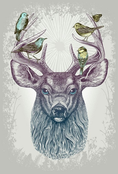 Hipster Animal Drawings Tumblr