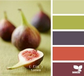 Fig color scheme by nola  more of my favorite, stay warm with the accent of teal/gray/blue here and there