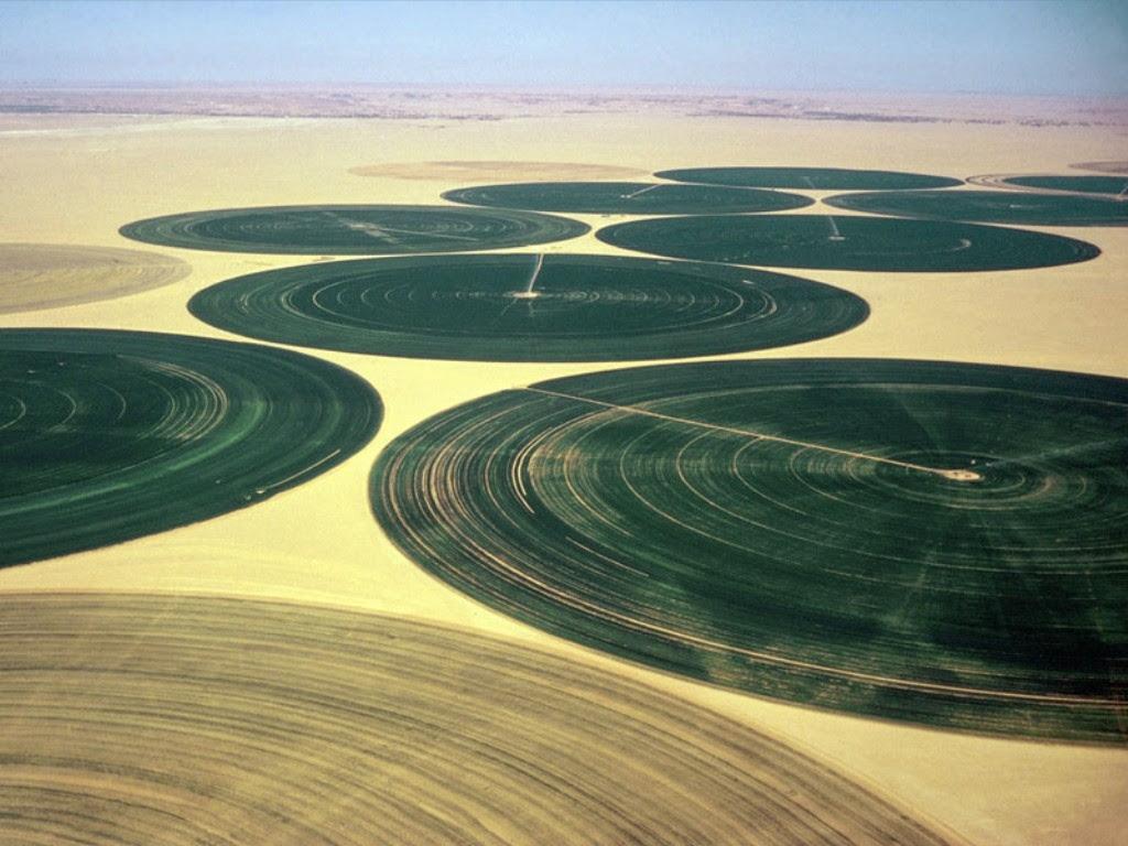 http://www.astrosurf.com/luxorion/Sciences/kufra-oasis-sahara.jpg