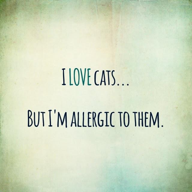 Cute Love Quotes Pinterest. QuotesGram