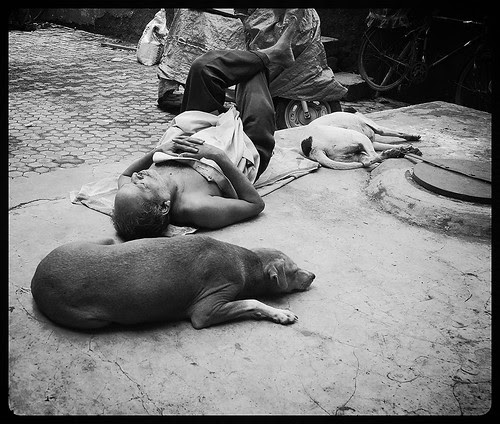 zindagi ek khwab hai... by firoze shakir photographerno1