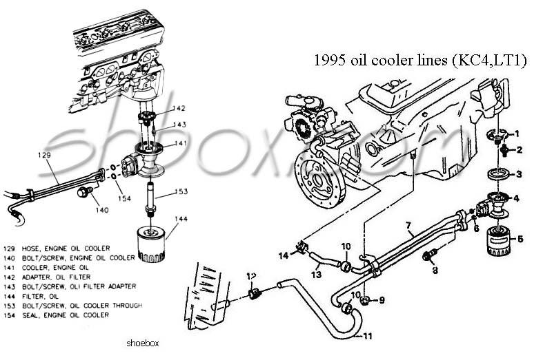 Oil Cooler Diagram Toyota 3 0 Engine Diagram Wiring Diagram Grab Grab Lastanzadeltempo It