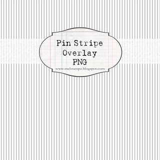 SAMPLE NOT FOR PRINT pin stripe overlay WHITE 12 and a half inch SQ 350dpi mel stampz
