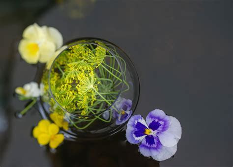 Edible Flowers for Cocktails.