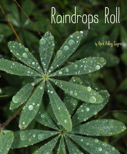 April Sayre's Book Raindrops Roll