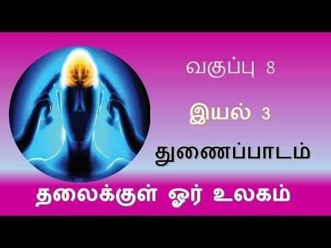 8th Tamil இயல் 3 துணைப்பாடம் தலைக்குள் ஓர் உலகம் Kalvi TV