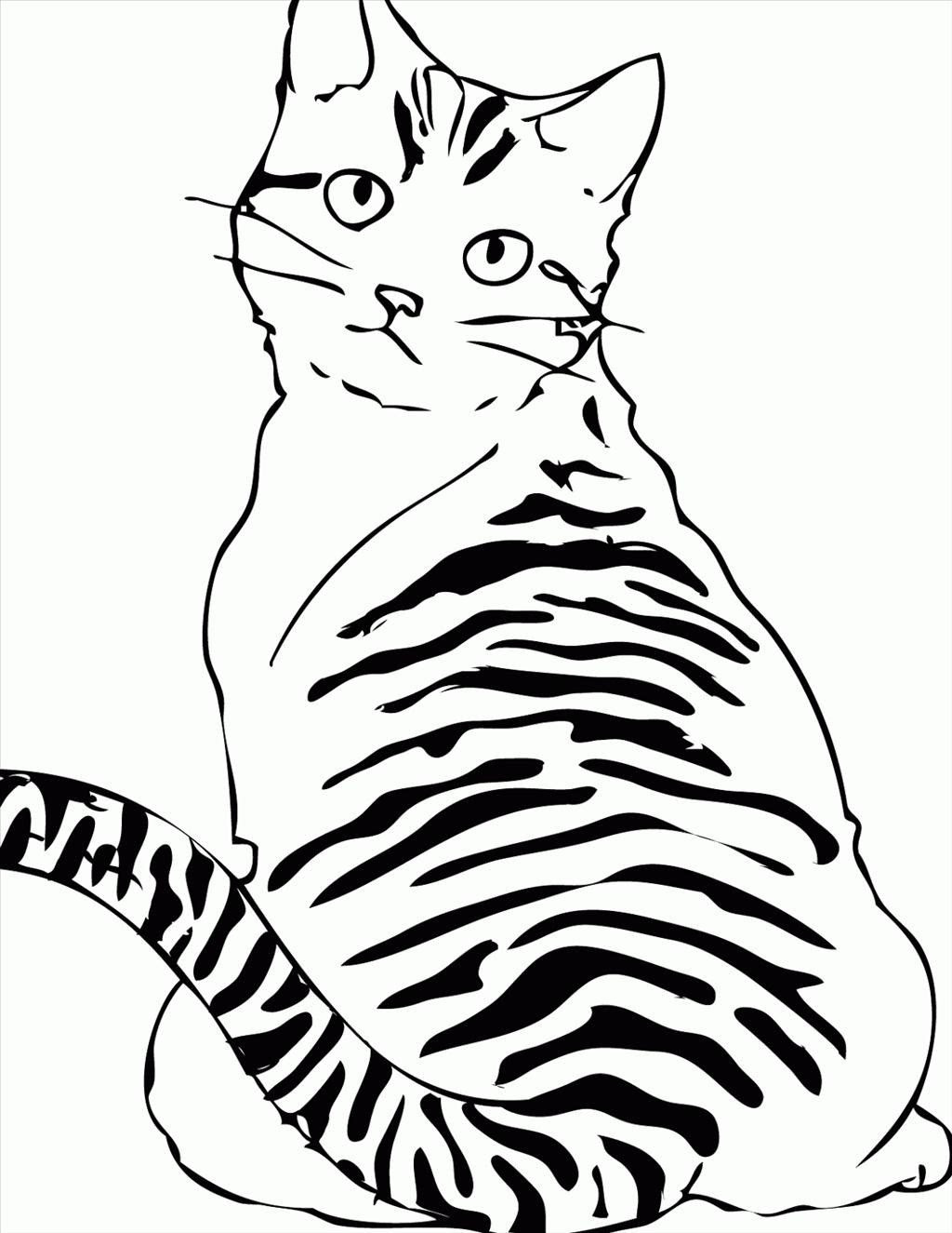 Tabby Cat Coloring Pages at GetColorings.com | Free ...
