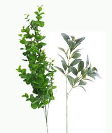 http://www.hobbylobby.com/Floral-Wedding/Flower-Stems/Lambs-Ear-Stem/p/LE90210