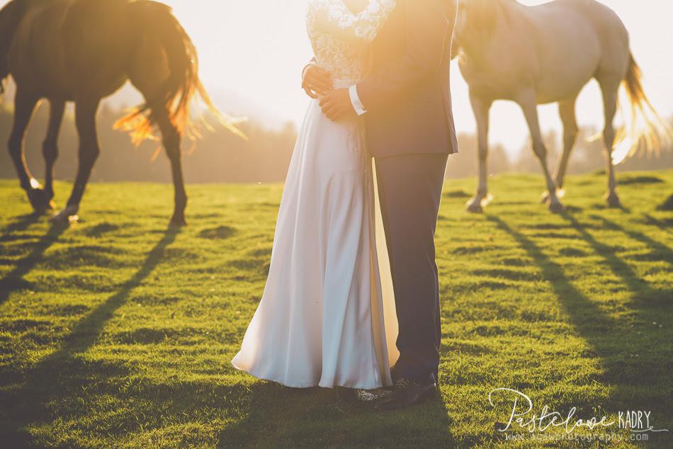 zdjęcia ślubne konie