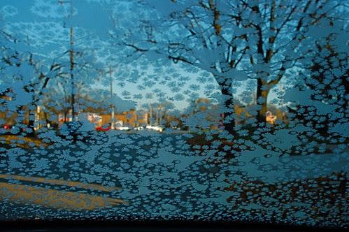 Frosty Morning, Better Scrape!
