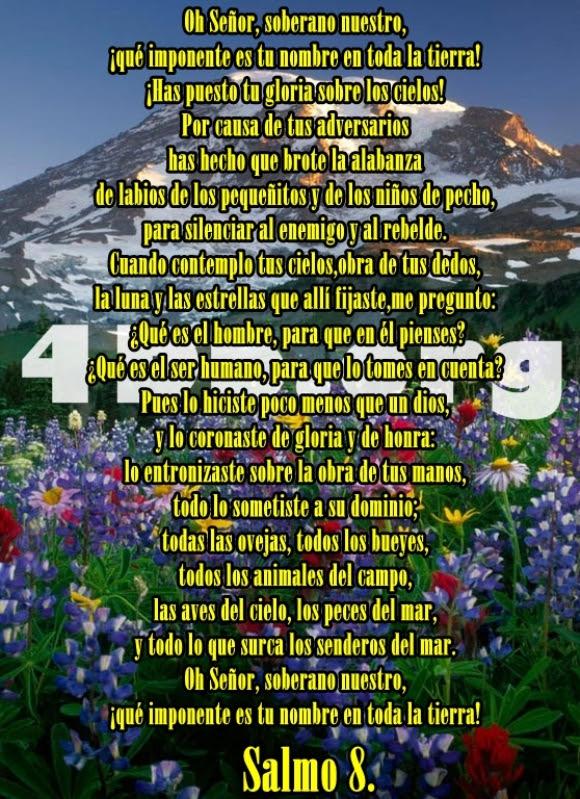 Salmo 8 Oh Senor Frases De Amor Dios Es Bueno Diosesbueno Com