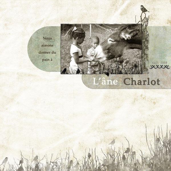 Timounette, L'ane Charlot