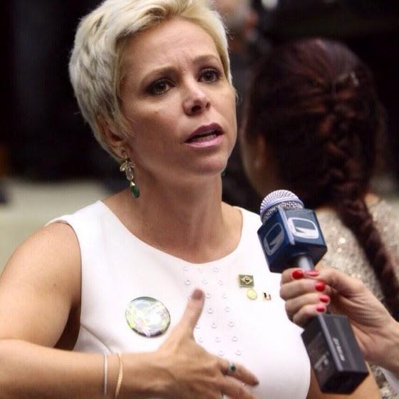 Resultado de imagem para cristina brasil deputada