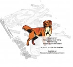 Nova Scotia Duck Tolling Retriever or Yard Art Woodworking Pattern - fee plans from WoodworkersWorkshop® Online Store - Nova Scotia Duck Tolling Retriever Dogs,pets,intarsia,yard art,painting wood crafts,scrollsawing patterns,drawings,plywood,plywoodworking plans,woodworkers projects,workshop blueprints
