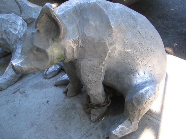 Nob Hill Pigs