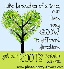 Quotes About Tree Sayings 22 Quotes