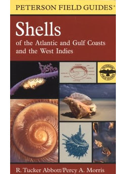 Fish Shell Plant Books Rolling Harbour Abaco