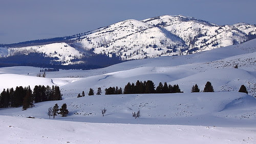 IMG_9978 Washburn Range, Yellowstone National Park