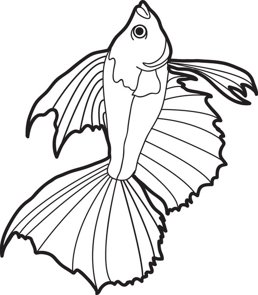 Printable Realistic Fish Coloring Page for Kids #2 - SupplyMe