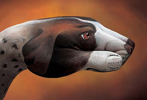 Pointer - Campagna Europea Schroeders - 2001 (Guido Daniele)
