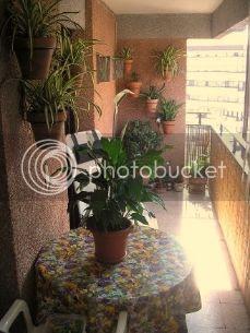 photo 790738c1-d2a5-46e8-b99e-2ddc19990b4d.jpg
