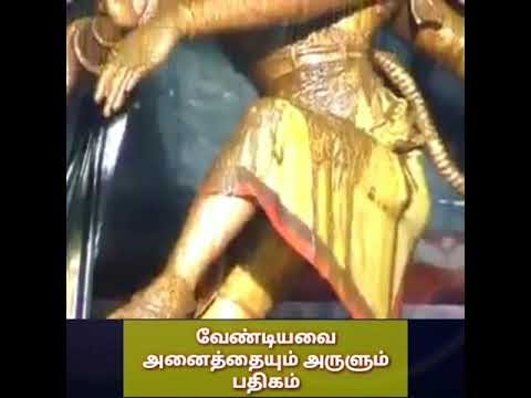 விரும்பியது அனைத்தும் பெற இந்த பதிகத்தை கேளுங்கள்#vamananseshadri#rudrah...