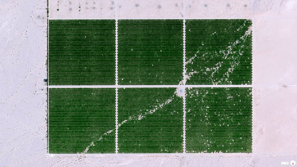 Cadiz Ranch Essex, California, USA 34.494638, -115.500469   Cadiz Ranch in Essex, California is located in the middle of the Mojave Desert. The organic farm grows lemons, table grapes (dried and turned into raisins) and squash on more than 300 acres of irrigated desert. This is made possible by seven wells that pump 2,000 gallons of water per minute at all times from an underground aquifer - a layer of water-bearing permeable rock from which water can be extracted.