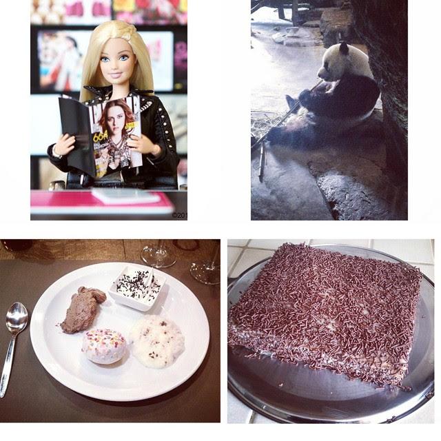 barbie instagram, panda pairi daiza, belgium pandas, xao hao, petit beurre pie