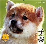 2011子柴 (Yama-Kei Calendar 2011)