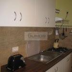 #domenii #Herastrau #elias #Piatadomenii #3camere #vila #rent #inchirierenord #rezidential # (24)
