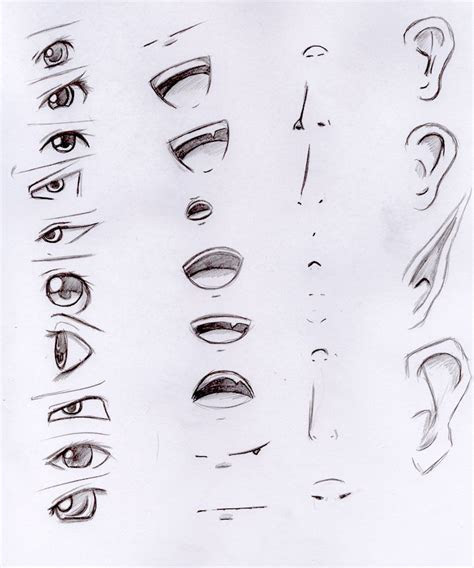 eyes nose ears mouth   art sketches drawings