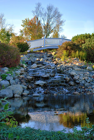 Bridge and Stream at the Wedding Gazebo