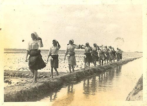 Mulheres-em-fila-indi