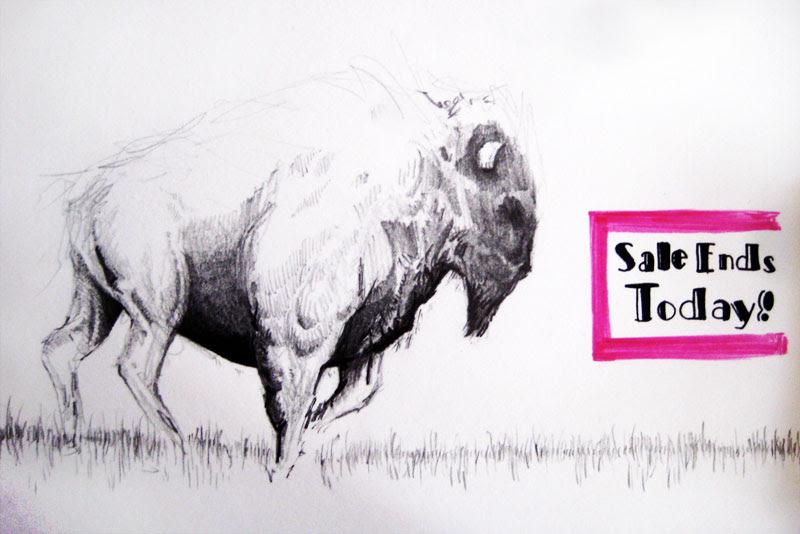 muybridge buffalo
