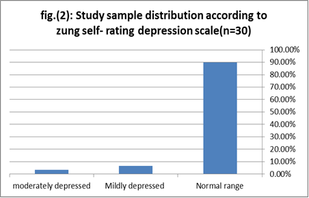 Evaluating Nursing Students' Anxiety and Depression during ...