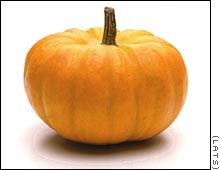 http://www.creativebiblestudy.com/images/pumpkin.jpg