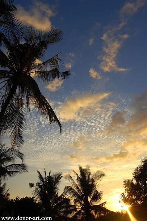 ref background pemandangan alam images