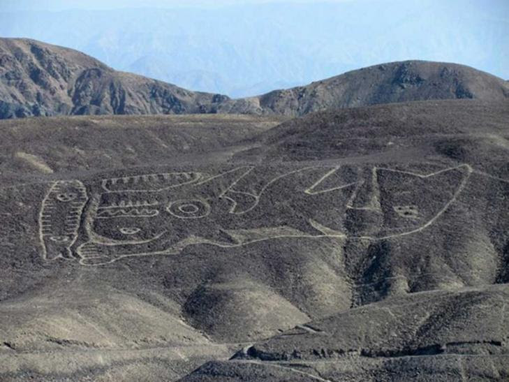 Gigantic 2000 year old geoglyph of an orca