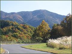 31 mountain road susuki