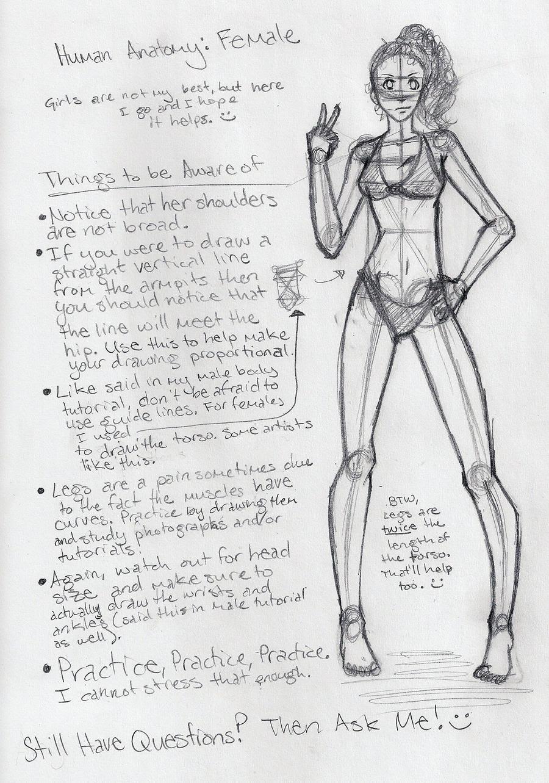 Female Anatomy Tutorial by shoujoartist on DeviantArt