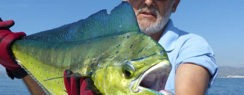 5 elementos indispensables para el pescador