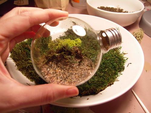 Add reindeer moss and sheet moss