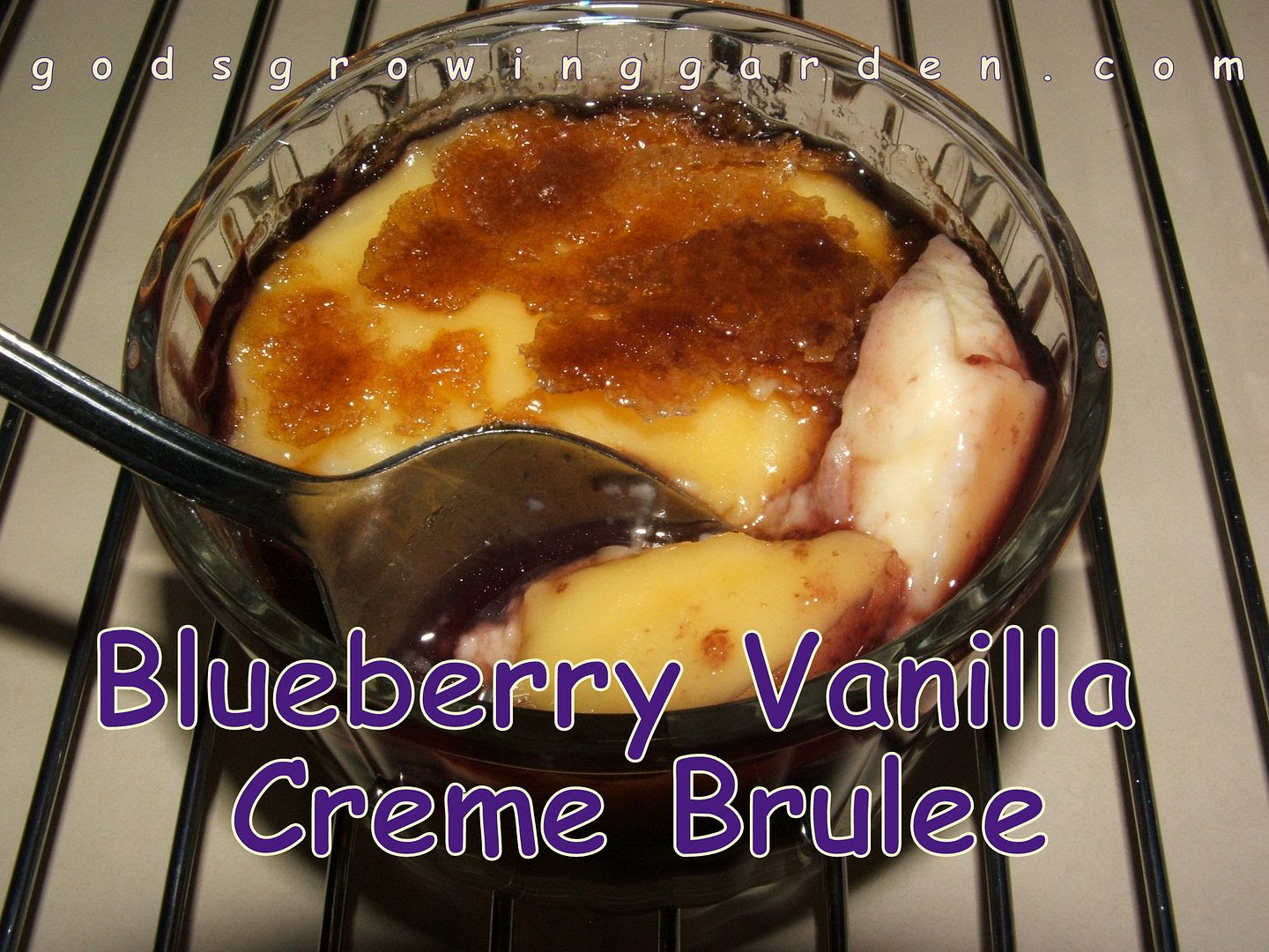 Blueberry Vanilla Creme Brulee by Angie Ouellette-Tower for godsgrowinggarden.com photo 014_zps2b52e365.jpg