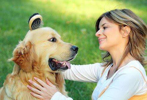 There are various ways to manage your pet allergies by keeping the pet outside, limit carpeting, use HEPA air filters, minimized upholstered furniture, vacuum and clean often and brush and wash your pet regularly.
