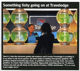 clipping from page 52 of Business Travel World, June 2007 edition about Travelodge's goldfish hire trial