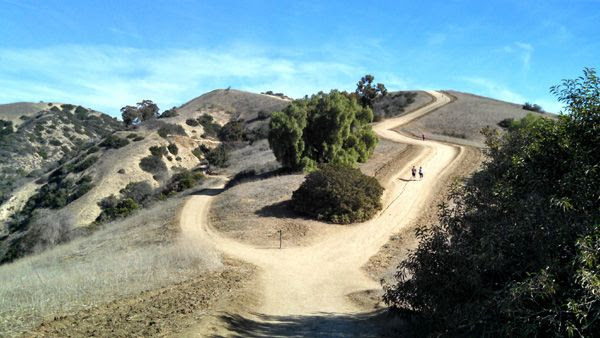 A view from the trail Nancy and I used for our hike in Whittier, CA...on November 24, 2014.