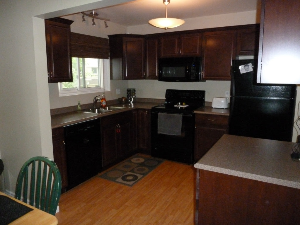 Kitchen Colors With Black Cabinets Kitchen Sohor