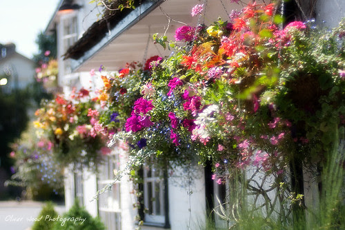 Prestbury Hanging Baskets by Oliver Wood Photography