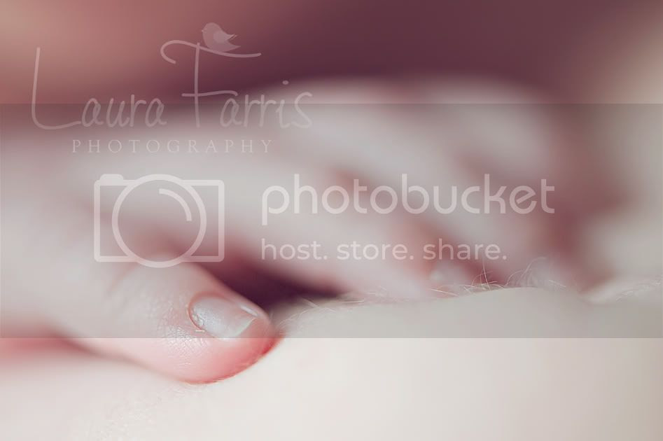 newborn photography Idaho