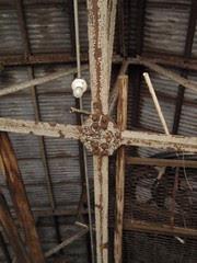 mule barn ceiling